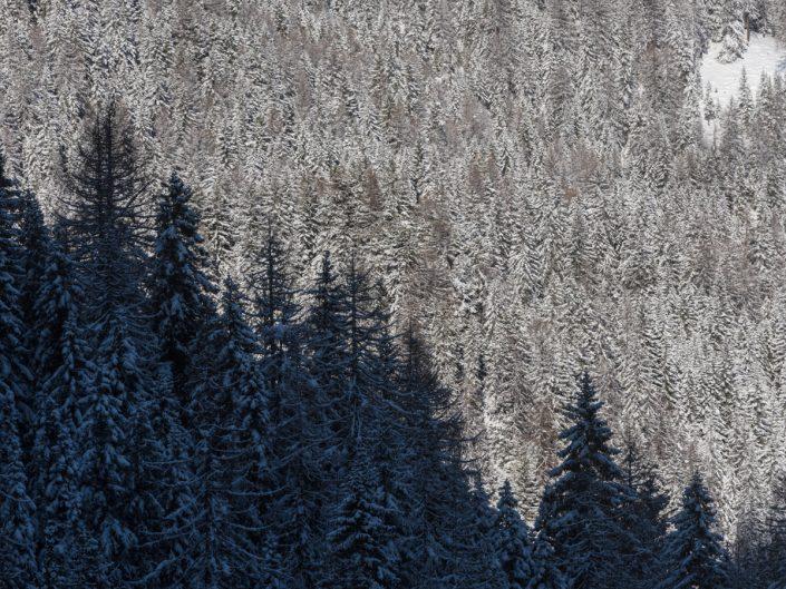 paesaggi invernali / winter landscapes