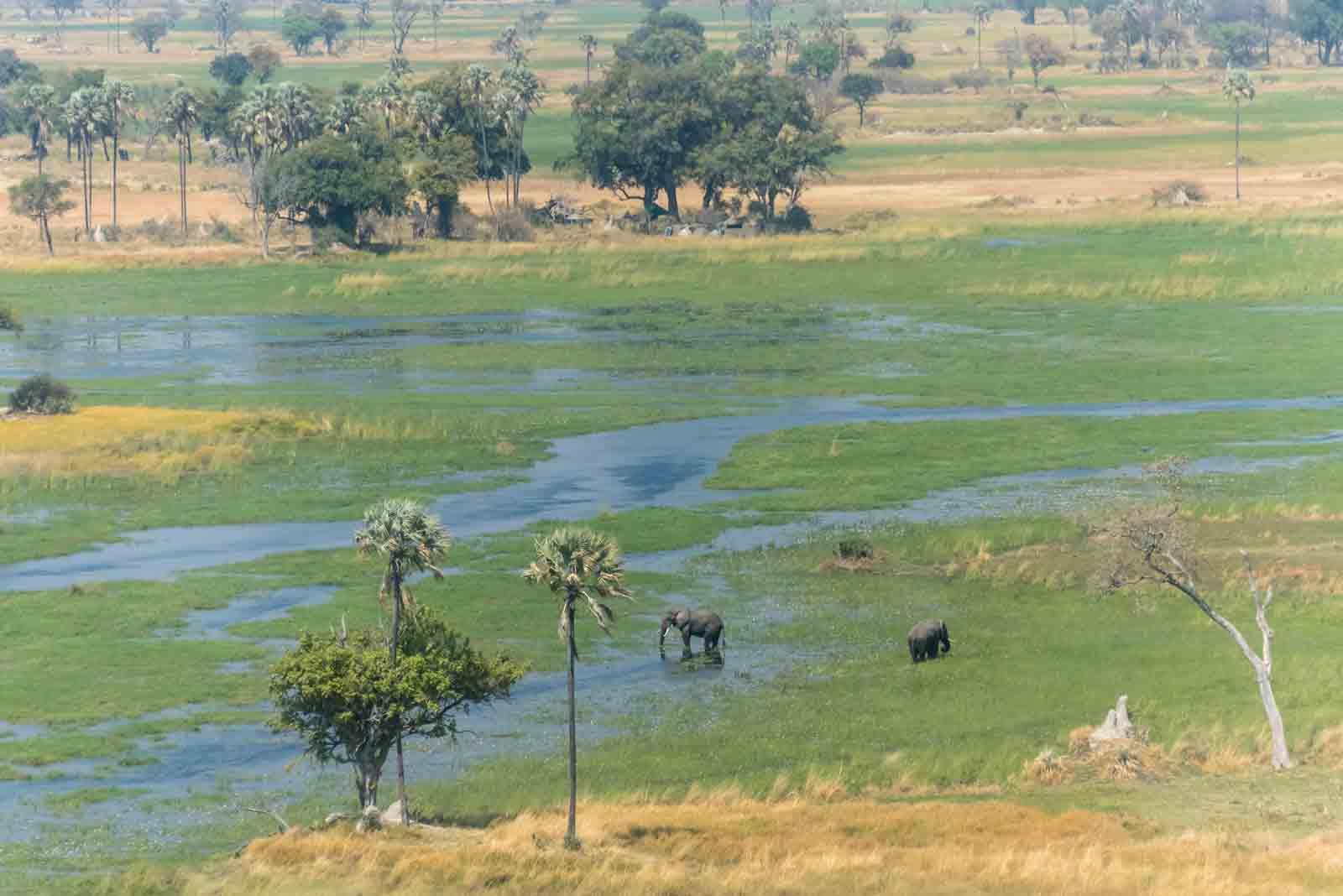 Botswana Foto di incontri